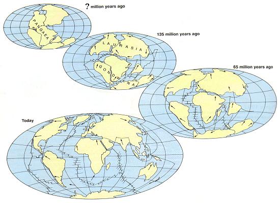 Scientific Notation: Pangea & Continental Drift